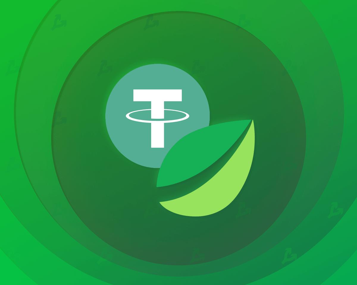 Капитализация Tether превысила $50 млрд