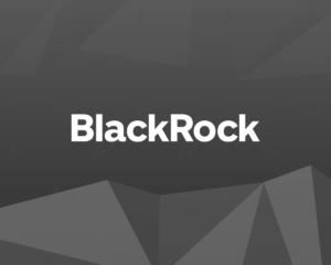 Инвестдиректор BlackRock объяснил свое решение о покупке биткоина