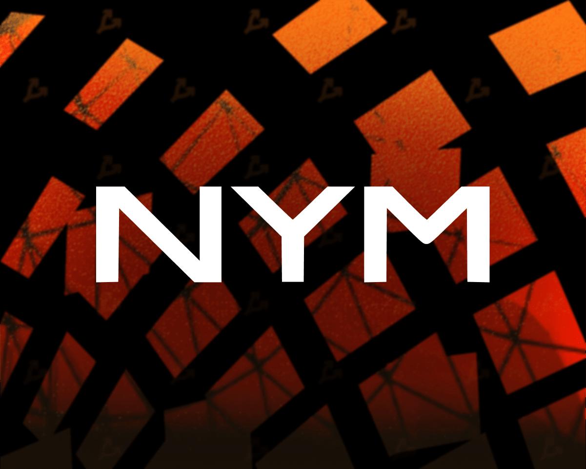 Информатор WikiLeaks проведет аудит безопасности микснета Nym