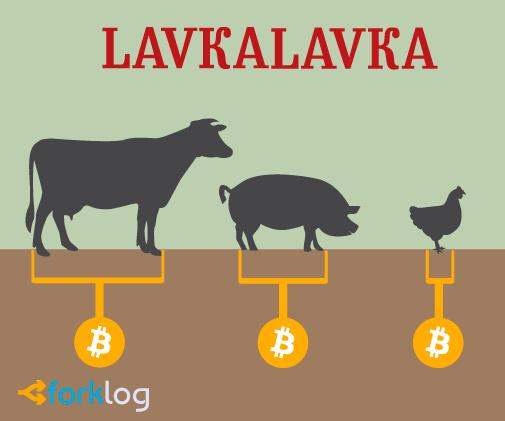 LavkaLavka проведет первое легальное ICO в России на площадке «Восход»