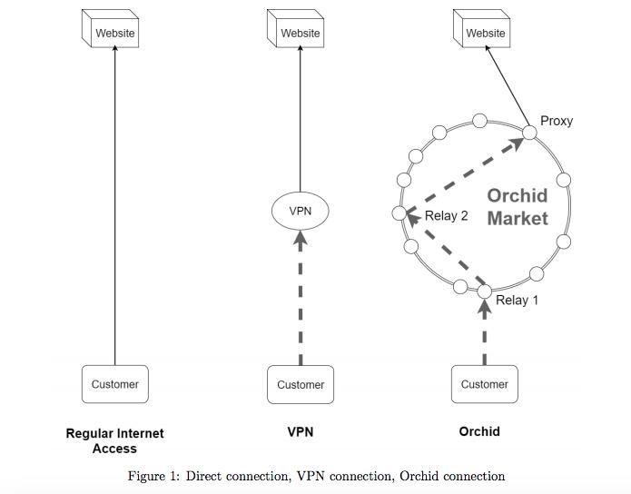 Orchid Labs намерена привлечь 5 млн на блокчейн-альтернативу анонимному браузеру Tor