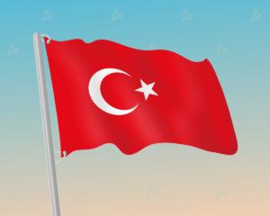В Турции 12 подозреваемых в мошенничестве исчезли с 350 млн Dogecoin