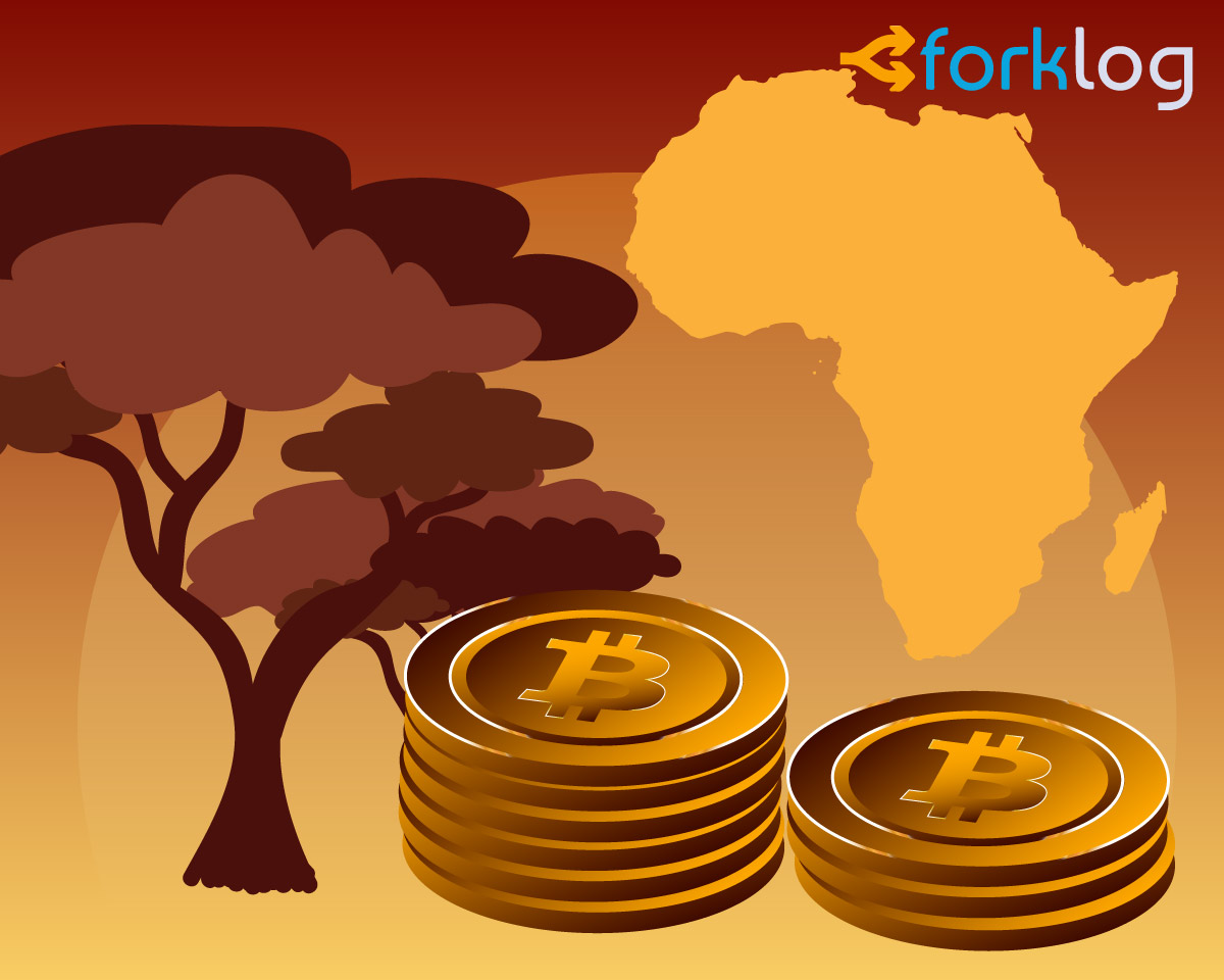 Биткоин в Зимбабве достиг $17 000 на фоне блокировок платежных приложений