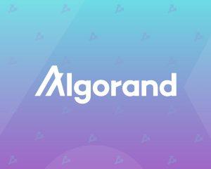 Algorand Foundation запустила фонд для поддержки DeFi-инноваций