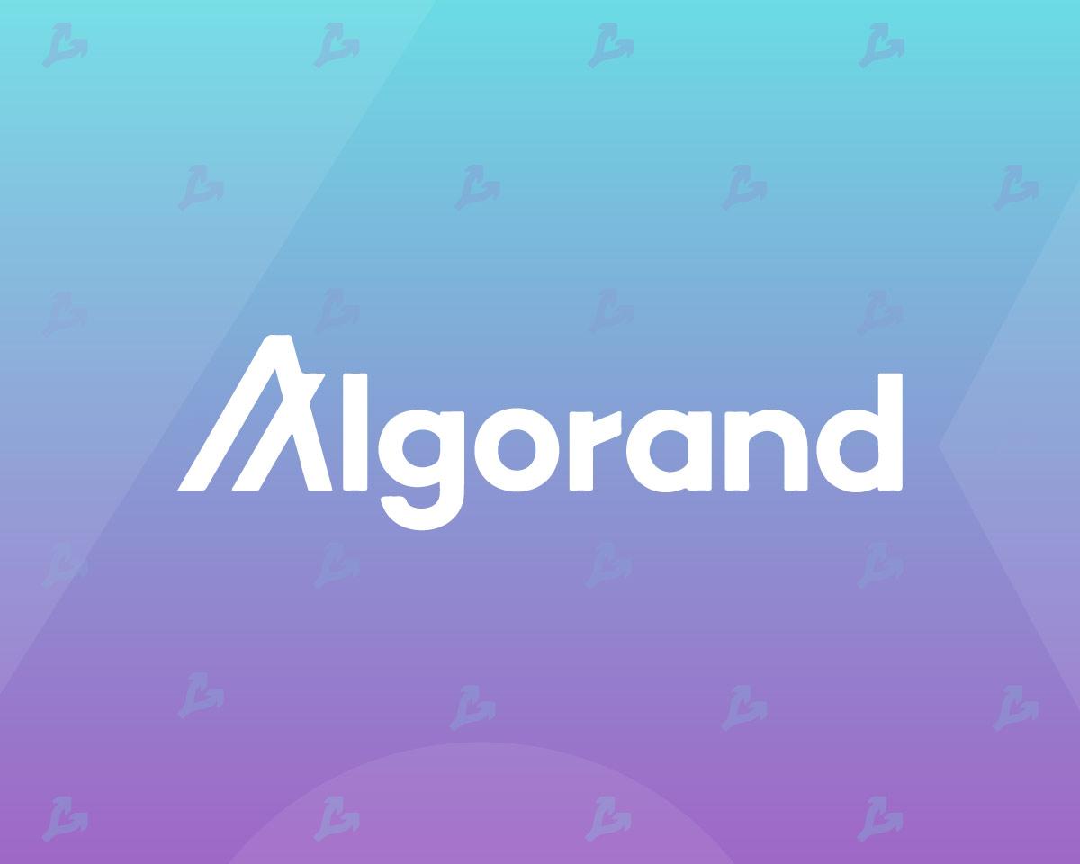 Протокол Algorand обновили для облегчения создания DeFi-приложений