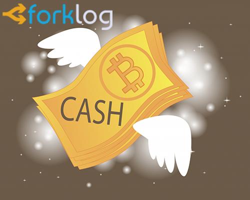 В BitPay Checkout добавлена поддержка платежей в Bitcoin Cash для бизнеса