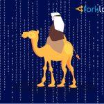 Президент Ирана предложил создать цифровую валюту исламских стран для борьбы с долларом