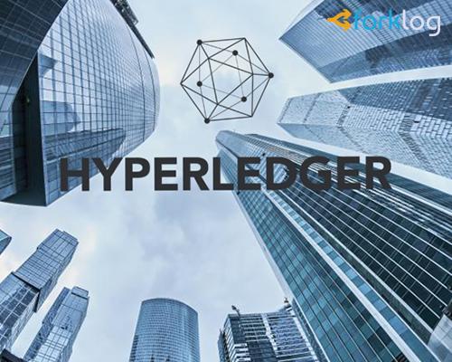 Hyperledger представил новый блокчейн-фреймворк Grid