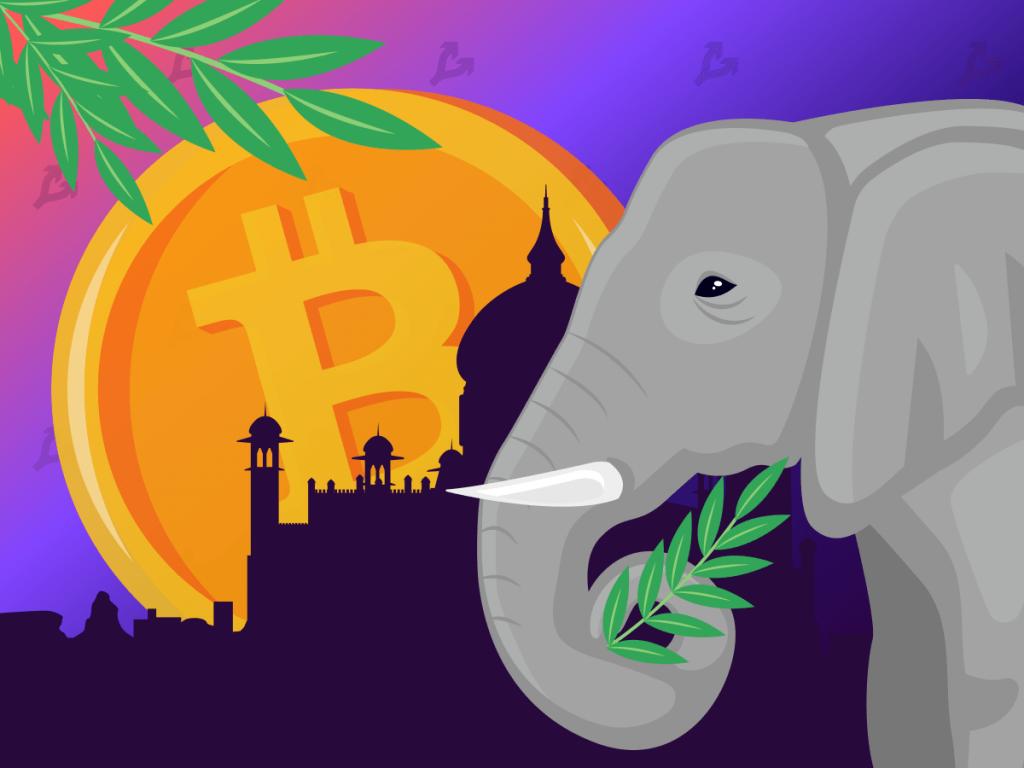 Cashaa запустит в Индии дружественный к биткоину банк с десятками филиалов