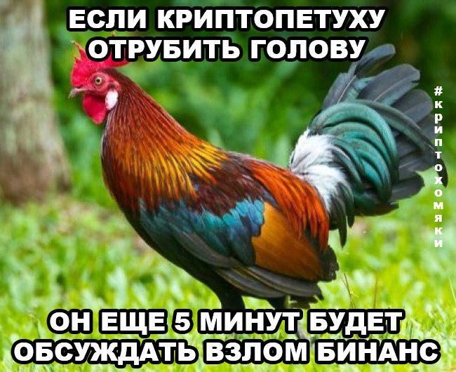 Бинансы поют романсы: мемы на случай, когда funds are not safu