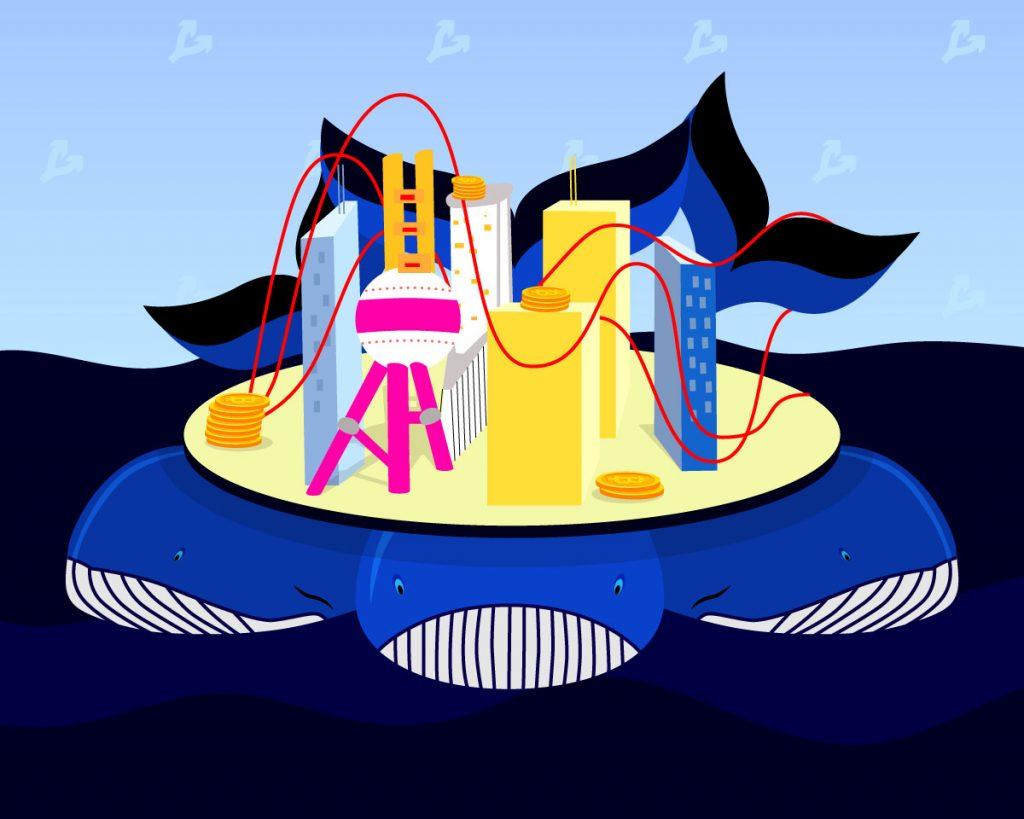 Число китов взлетело на 38% на фоне роста биткоина до $11 000 - http://forklog.com/