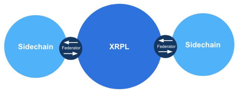 СTO Ripple предложил запустить сайдчейн на базе XRP